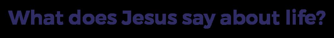 jesus-on-life-tag